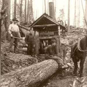 Logging History in Chemainus